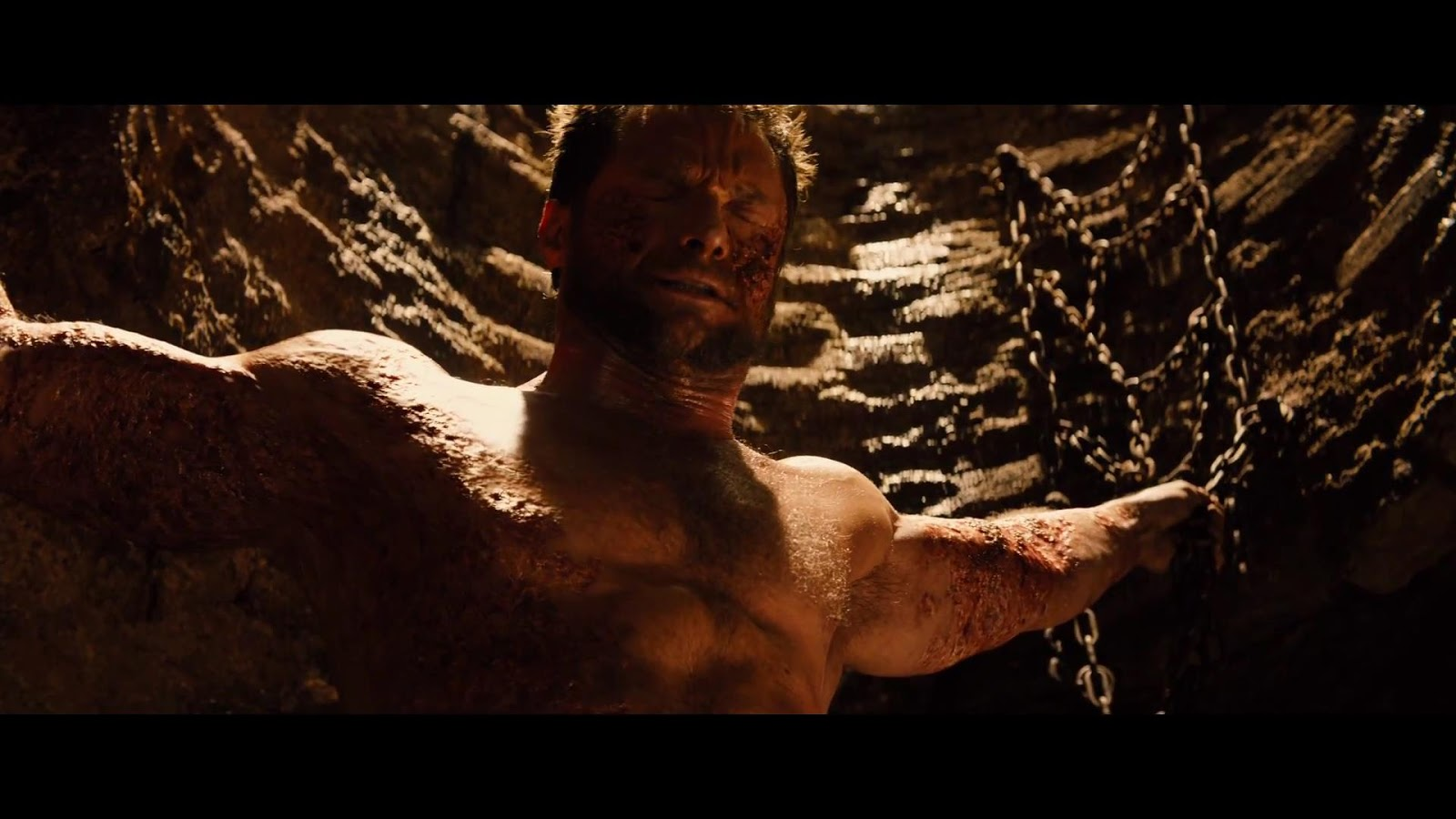 The Wolverine 2013: Review: The Wolverine 2013